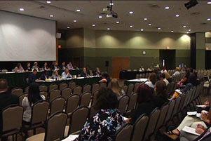 Speaker's Task Force on Adoption holds first public hearing at UW-Green Baying in Wisconsin.